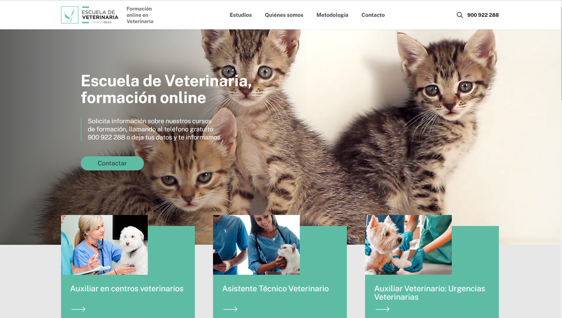 cursos-online-veterinaria